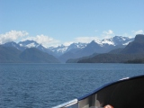 South Island Dreaming