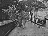 Kudos for Hurricane Sandy CrisisCommunications